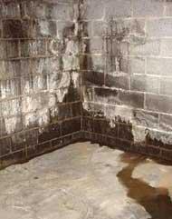 Umidit da risalita sui muri - Risalita capillare ...